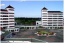 Muhammadiyah Siap Buka Kampus di Luar Negeri di Wilayah Berikut: