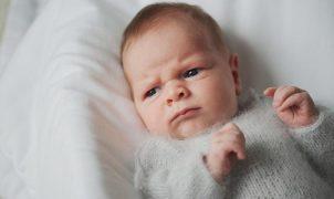 memahami bahasa bayi